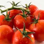 巷で噂のさくらんぼトマトとは?